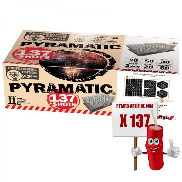 Feu d'artifice automatique Pyramatic 137 lancements avec effets extrêmement variés